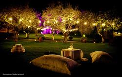 Villa Fiore.jpg