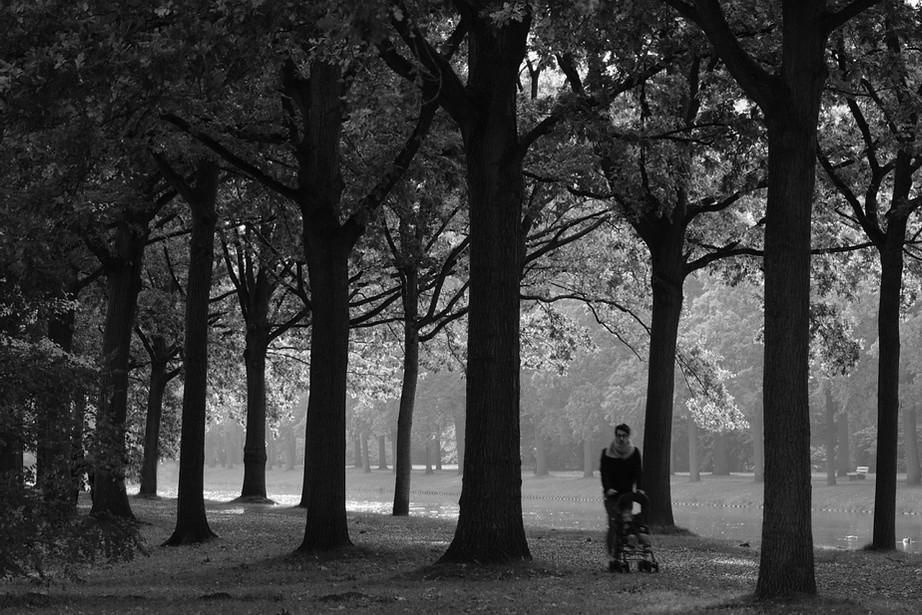 Herbststimmung - von Ulrike