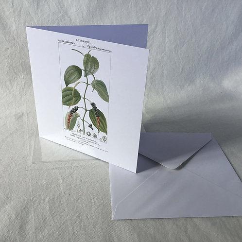 フランス ボタニカル (果実 ) グリーティングカード バースデーカード ブランクカード 6枚セット 封筒付き