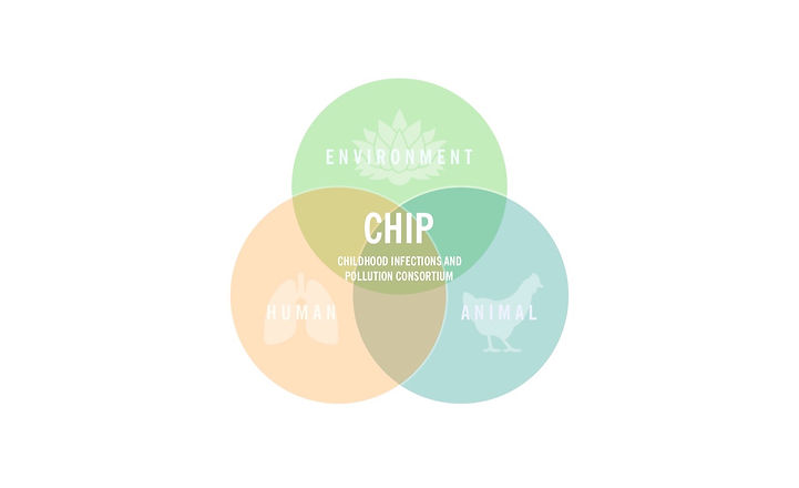 CHIP%20logo%20copy_edited.jpg