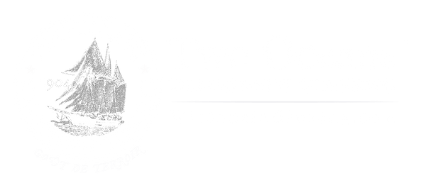 Two Oceans Premium Wiconsin Ginseng logo