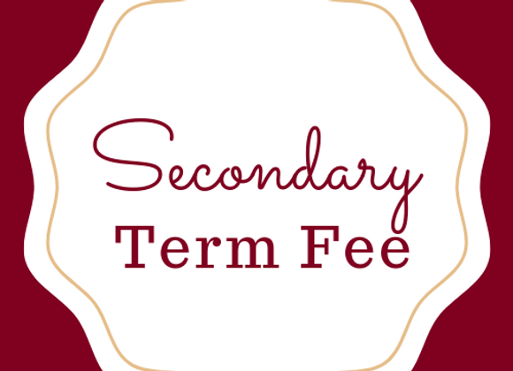 Secondary Term Payment