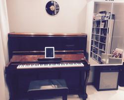aula de canto e piano campeche
