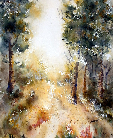 Forêt girondine.JPG