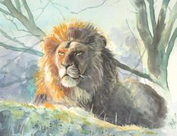 león.jpg