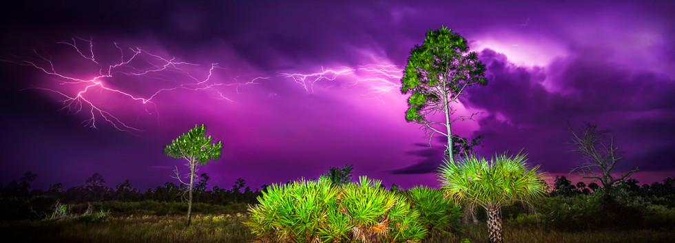 Slough lightning.jpg
