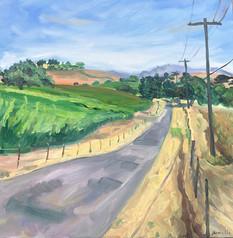 Stolpman Vineyards (Ballard Canyon), Los Olivos, CA. 2020