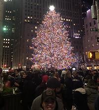 NYC tree.heic