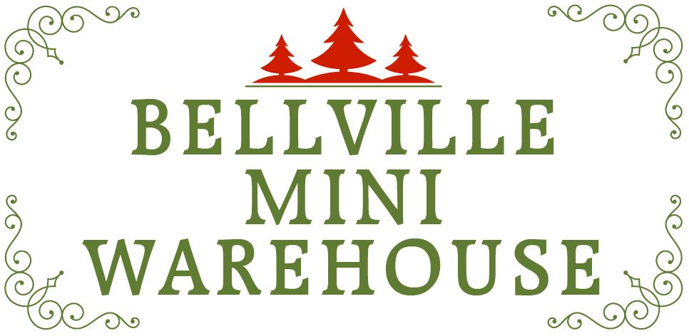 silver bellville mini warehouse
