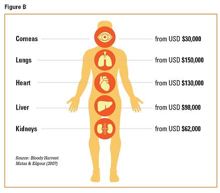 Organ Trafficking Part 1: An International Market Worth Billions
