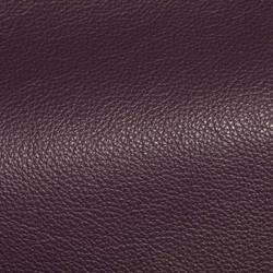 Holland Tulip Leather Tile