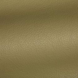 Holland Spring Green Leather Tile