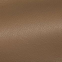 Holland Stone Leather Tile