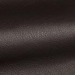Holland Midnight Leather Tile
