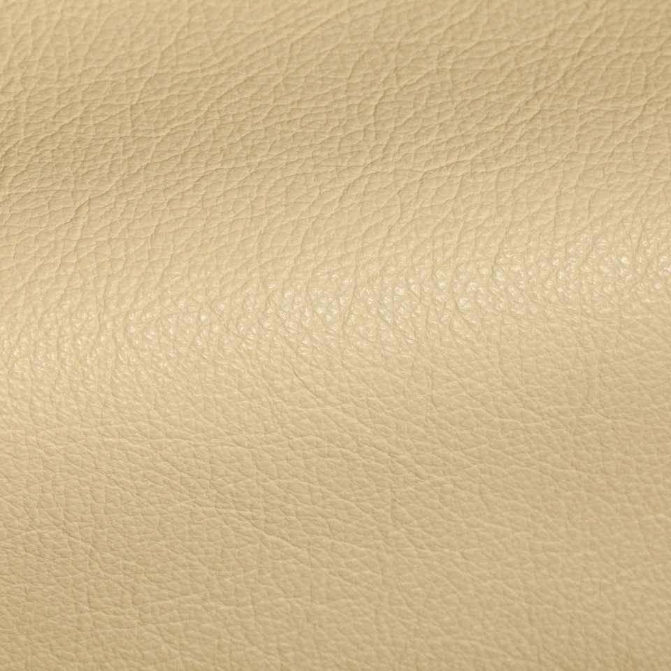 Holland Cameo Leather Tile