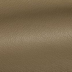 Holland Fern Leather Tile