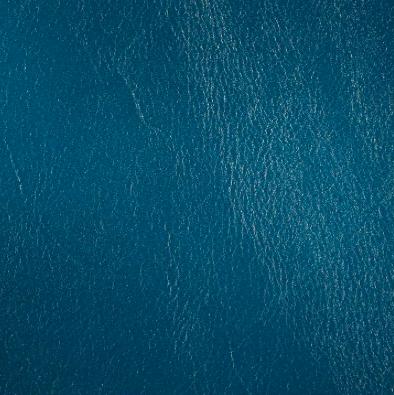 Kipling Royal Navy Leather Tile