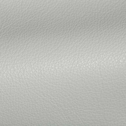 Holland Fresh Water Leather Tile