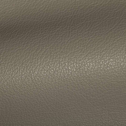 Holland Putty Leather Tile