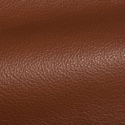 Holland Terra Cotta Leather Tile