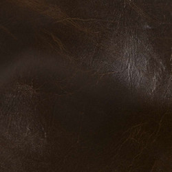 Absolute Molasses Leather Tile