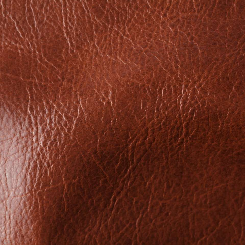 Echo Meridian Red Leather