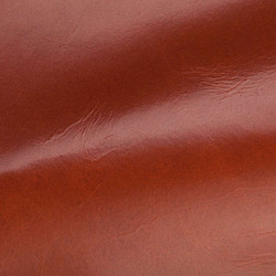 Mont Blanc Coral Leather Tile