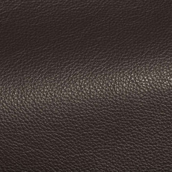 Holland Carbon Leather Tile