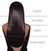 schema cheveux.jpg