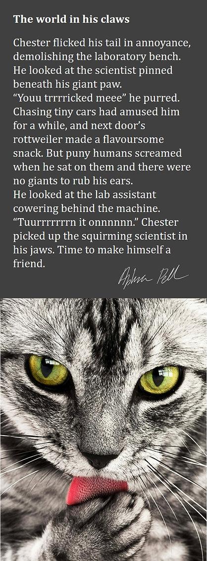 Chester card.jpg
