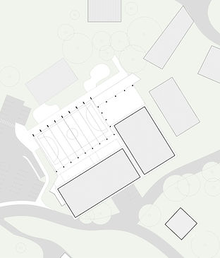 Zebra Lab cubierta