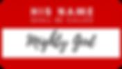 HNSBC #2 logo.png