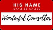 HNSBC #1 Logo.png