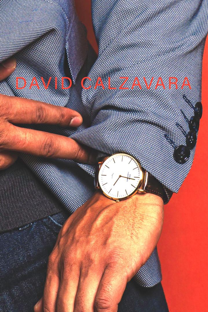 DAVID CALZAVARA BUSINESS CARDSAMPLE.jpg