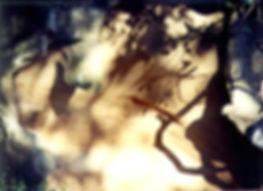 wind_hewn_rock.jpg