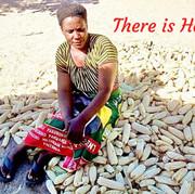 Maize-in-Zambia-1-768x644.jpg