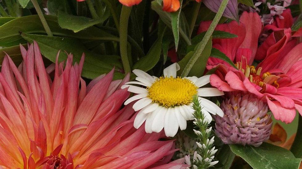 5-week Summer Bouquet Subscription