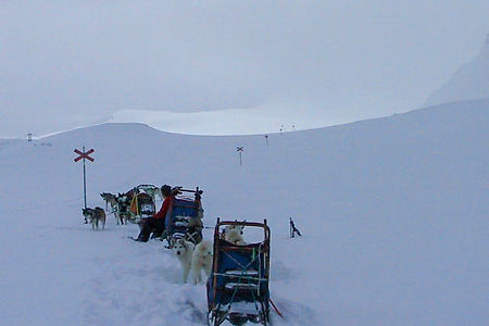 Sleddog team resting on the way up to Tjäktja in the Swedish mountain in Swedish Lapland