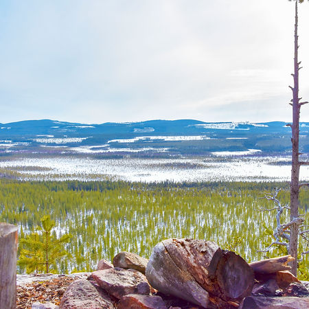 Surrounding nature at Laplandhusky in Swedish Lapland