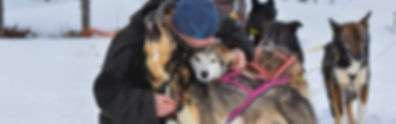 Kim and the alaskan huskies Elmer and Hebbe at Laplandhusky in Swedish Lapland