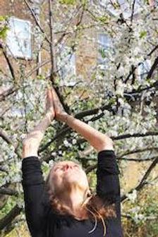 yoga sarahscott.jpg