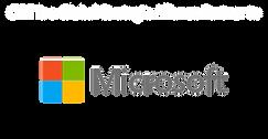 CIRT Microsoft logo.png