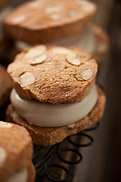 Protein-Almond-Cookie-22-x-28-9917-copy_
