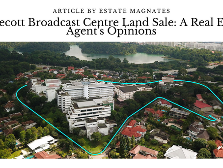 Caldecott Broadcast Centre Land Sale: A Real Estate Agent's Opinions