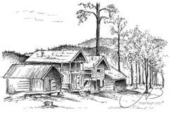 Øyskogen - Fyresdal