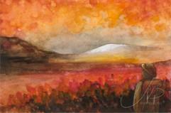 M.W54 : Det lysner i horisonten