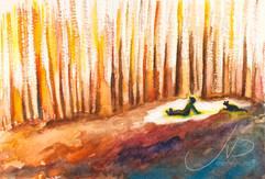 M.W25 : Skogen healer