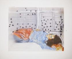 Flies - 2013 - pastels on paper - 29X24cm