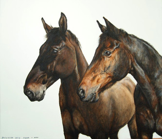 Commissioned portrait of two Horses