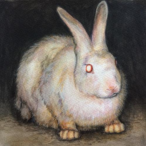 White Rabbit 2020